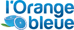 orange bleue logo officiel