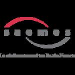 Logo SAEMES Parking